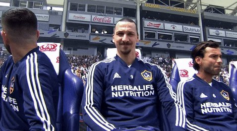 Happy 38th Birthday to Zlatan Ibrahimovi !!!  They lion keeps roaring on
