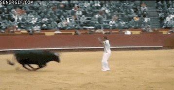 Cuidado con el toro :V https://t.co/bfSu1iYUmG