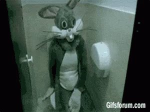 @davematt88 We havent communicated in a while. Come have a seat.😂😂🐰🐰