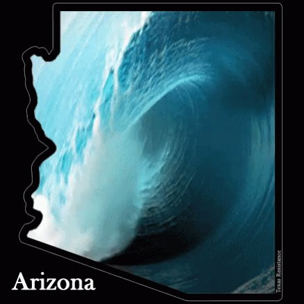 @RonPyke @erniefay Its neat. I have to restrain myself with the shopping. No, really. AZ needs to see some of these items. Cmon AZ -- we are a battleground state. Lets go to battle for @ShuttleCDRKelly!