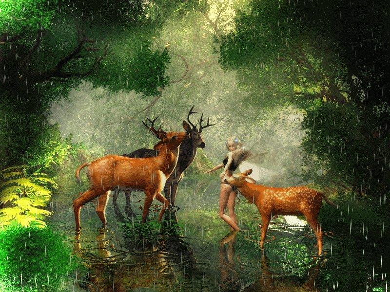 Картинки и анимации животных и природа, бумаги