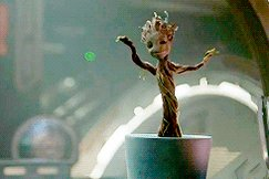 It's Friday! It's a long weekend! Please tell me I'm not the only one happy dancing!!! . . #FridayFeeling #FridayMorning #FridayThoughts #FridayMorning #FridayVibes #happydancing #weekend #weekendvibes #marvelcomics #IamGroot #weddingphotographer #nhphotographer #lovinglife