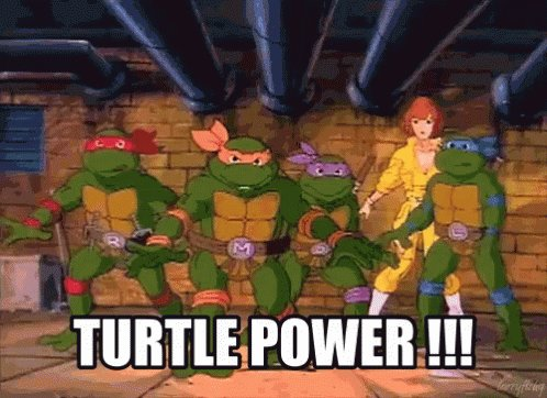 Ninja Turtle Power Rankings:  1) Michelangelo  2) Raphael  3) Donatello  4) Leonardo (I have issues with authority. Don't tell me you are the leader!)