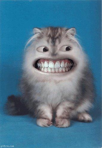 Make sure you smile!  #LHsummit