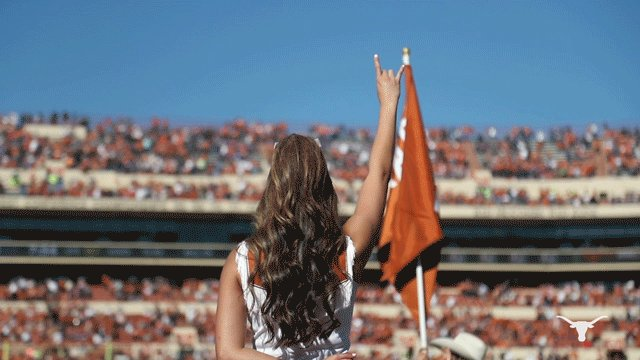 TexasLonghorns photo
