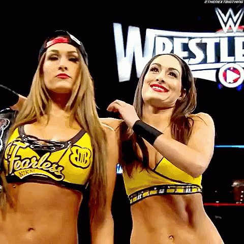 Happy Birthday to the Bella Twins, who turn 36 years old today