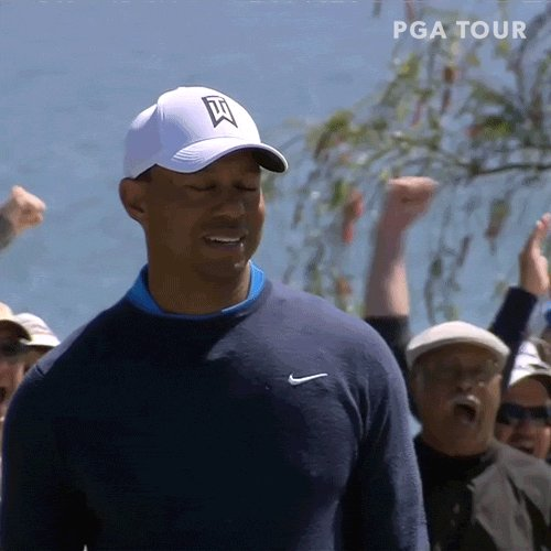 Image for the Tweet beginning: When you realize there's golf