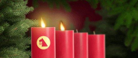 Image for the Tweet beginning: Einen schönen 2. Advent. Habe