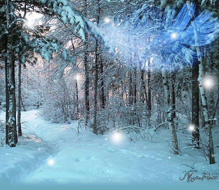 красивая картинка гифка снежного леса множество бюджетных кровельных
