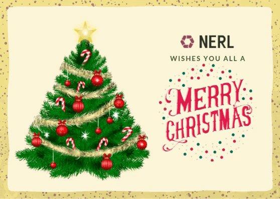 nerl_repository photo