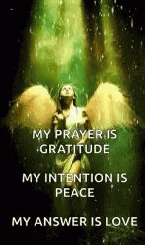 MRT @KariJoys Live w/ #Gratitude, #Peace & #Love! #JoyTrain #Joy #Kindness #MentalHealth RT @AishaJan25
