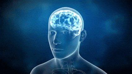 """""""Lo que desconcertó a los investigadores es que la disminución del cerebro de los humanos no actuaba en detrimento de las capacidades intelictivas, aunque si de su voluntad"""", @FdezMallo en #TrilogiaDeLaGuerra respecto al aislamiento de las comunidades..."""