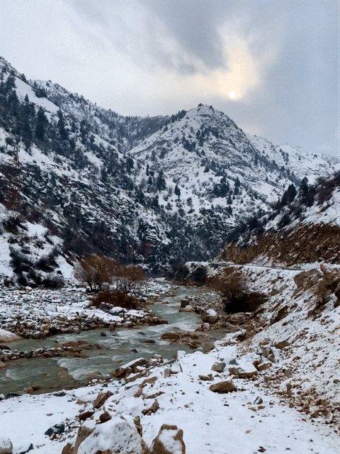 может такоб таджикистан фото большой
