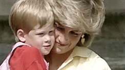I loved Diana I love the royal family I'm proud to be british, we have all watched Harry grow into the