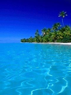 #PREVENTA departamentos #SLSMarinaBeach FACILIDADES DE PAGO Inf Elisa ☎️9981685141📩eramos@slscancun.com #SLS #SLSCancún #luxuryrealestate #instamood #paradise #marina #moderndesign #inversión #lujo #exclusividad #buceo #playas #jetset #PH #scuba #highlife