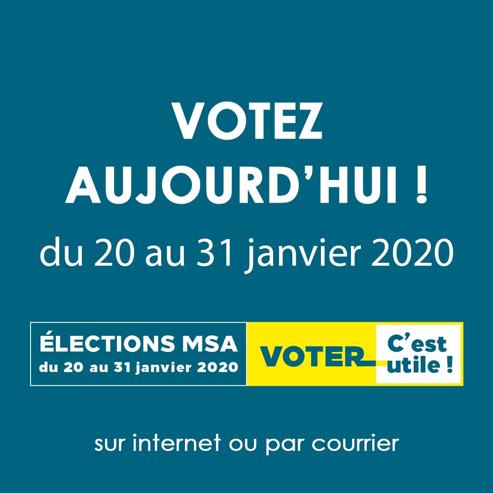 Image for the Tweet beginning: [#ElectionsMSA2020] Le vote est ouvert