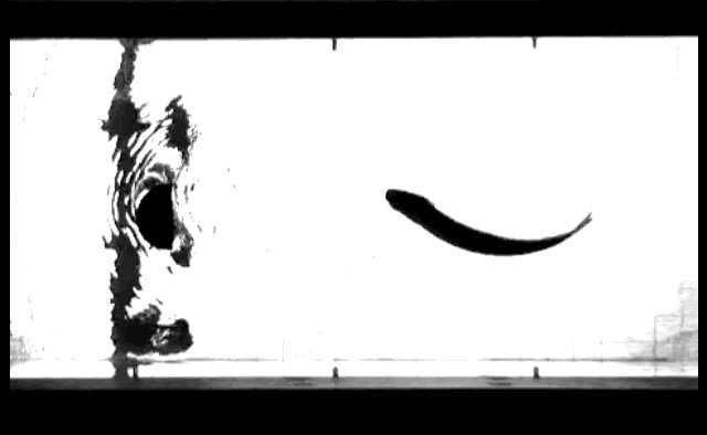 大阪大学細田先生@KohHosoda が紹介されていた,死んだ魚を乱流を起こした流れにいれると,まるで生きているかのような動きをする,という論文.動作において身体性がいかに支配的かを示していて,とてもおもしろい.