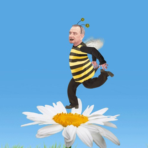 @TeacherBusy @mrsbrewtandcake bee cakes. Cakes with bees. Bee stuff
