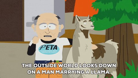 Wow. You guys really love animals.