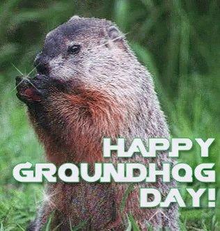 No shadow seen = an early spring! #GroundhogDay #PunxsutawneyPhil