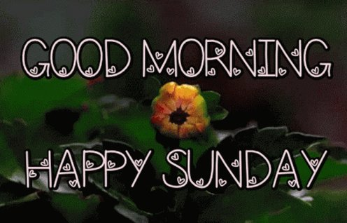 Thank you kindly, @ionacrv for the mention. Happy Sunday, everyone!