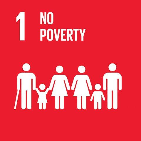 The Age of SDGs