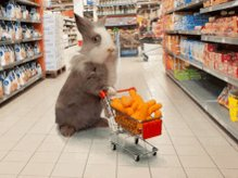 #WednesdayWisdom if we all liked the same thing we'd have much smaller supermarkets pic.twitter.com/wyKVlFDRbB