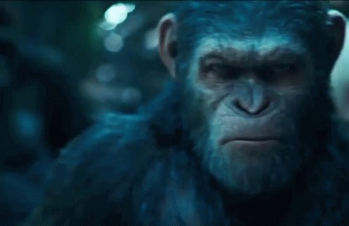 "'PLANET OF THE APES' Director Wes Ball has re-confirmed that his new films will NOT be a reboot of the series but will be a continuation  ""It's safe to say that Caesar's legacy will continue""  Via: @wesball #PlanetOfTheApespic.twitter.com/ZFpWg6xFnH"