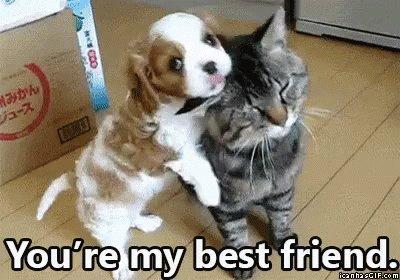 @andibeth012 @L0B033 So cool, so cute.