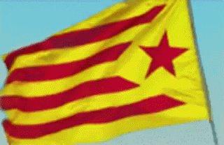 @AlexAlexprohaha si digo calsots y pan tumaca paso por catalan?  Visca catalunya! https://t.co/947P6eb6zv