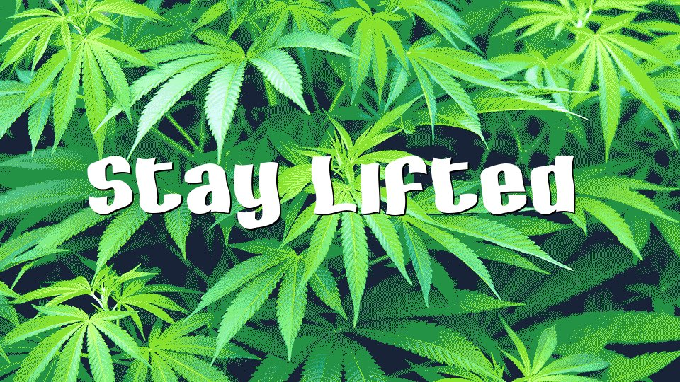 Image for the Tweet beginning: Stay Lifted #StonerFam 🔥🌿🍃💨💨💨💚✌️   #legalizeit