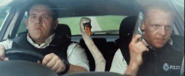 @alyb_batgirl Trumpeter Swan was robbed.