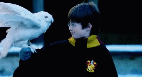 Hedwig is so pretty flying in the snow! #HarryPotter #WizardingWorld