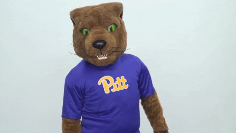 Hey there all you cool cats and kittens it's your favorite Panthers checking in on all the Pitt fans this weekend!   Stay safe and keep washing those hands! 🧼