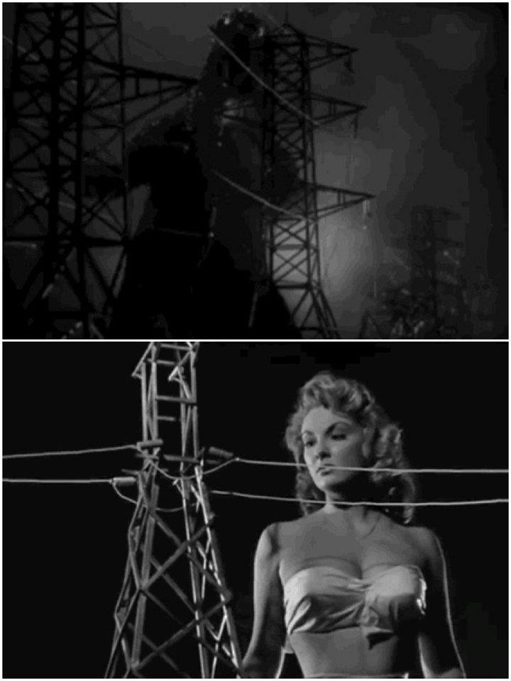 Godzilla/Attack Of The 50 Foot Woman  #sidebyside #godzilla #movies #cinema #film #scifi #sciencefictionpic.twitter.com/n2Ptkuqow4