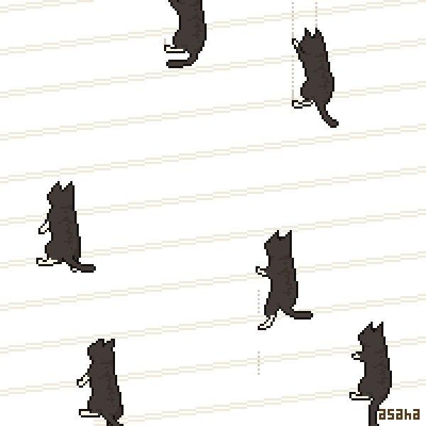 RT @vpandav: 今みなさんに、壁をのぼる猫を眺めるだけで1日が終わる呪いをかけました。 https://t.co/EJmnBdJ8aC