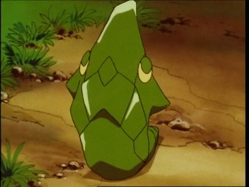 Let's check in on Metapod, Trainers! Yep, it's still just sitting here.