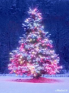 260 days until #Christmas.  What theme, if any, do you have for your Christmas tree?