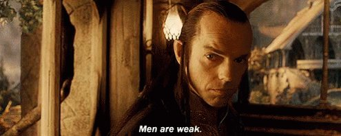 Lord Of The Rings Men GIF