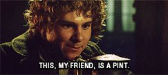drunk the lord of the rings GIF