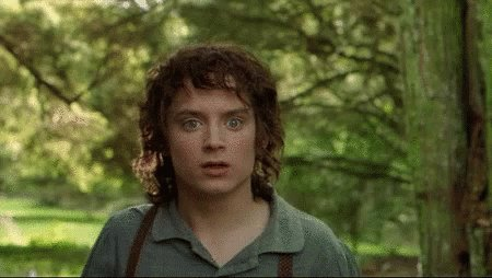 LOTR Lord Of The Rings GIF