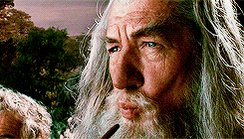 the lord of the rings bilbo GIF