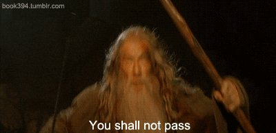 you shall not pass the lord of the rings GIF