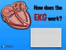 Ekg Heart Rate GIF
