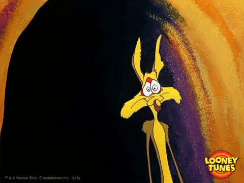 Wile E Coyote No GIF by Looney Tunes