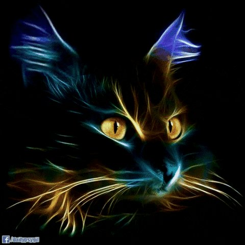 #amwriting about #mystical #cats smashwords.com/books/view/776…