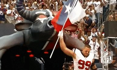 houston texans texas GIF by NFL