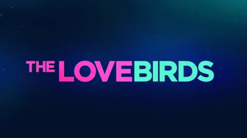 Watched #TheLovebirdsMovie on @netflix .... One Sentence Review: Date Night is MUCH better, BUT I love to see the diversity.