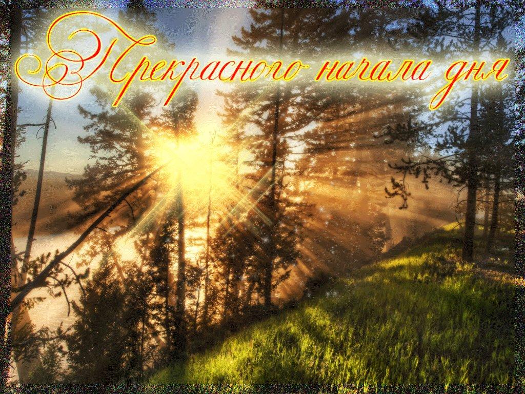 дракон открытки с добрым утром летние и чудесным днем природа этом посте