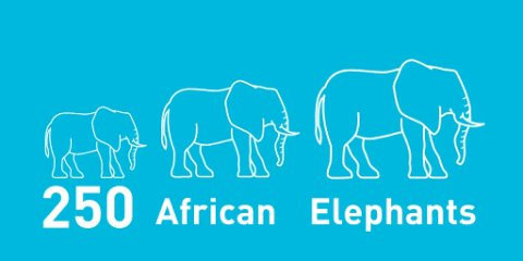 After2️⃣of #BrownBin collections, we've collected over 1400 tonnes of waste.😲 What could that compare to? 🚗🎹🐋✈️🐘